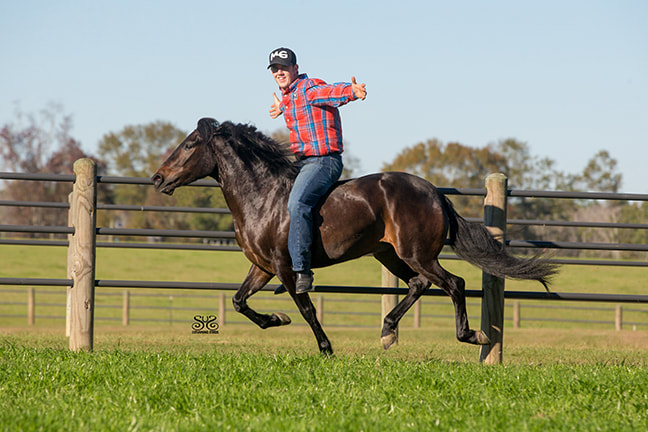 the-horse-guru-michael-gascon-gascon-horsemanship-15_orig