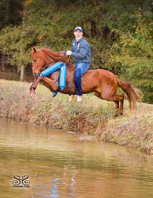 the-horse-guru-michael-gascon-gascon-horsemanship-16_orig