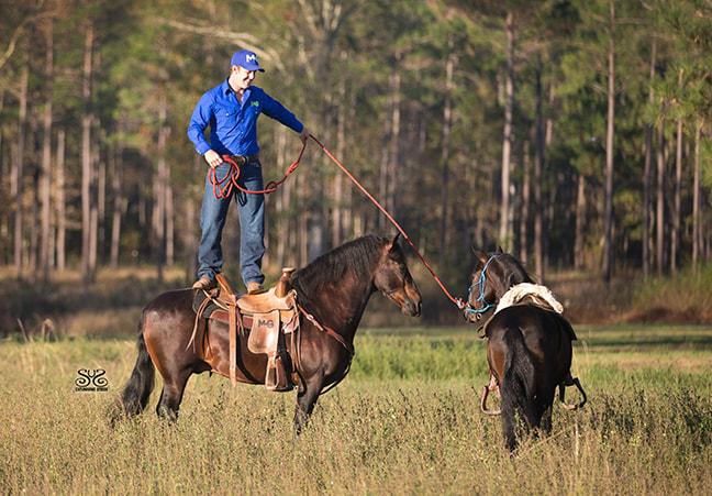 the-horse-guru-michael-gascon-gascon-horsemanship-19_orig