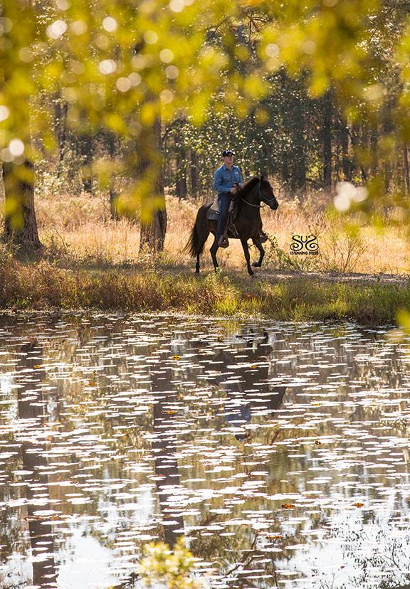 the-horse-guru-michael-gascon-gascon-horsemanship-23_orig