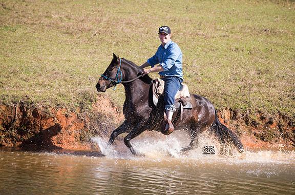 the-horse-guru-michael-gascon-gascon-horsemanship-26_orig