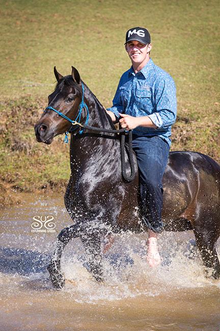 the-horse-guru-michael-gascon-gascon-horsemanship-27_orig