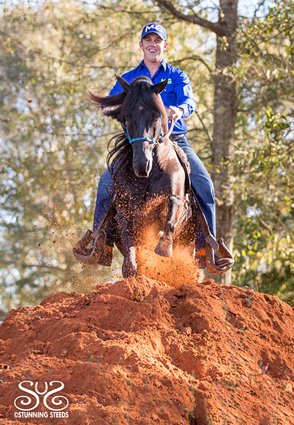 the-horse-guru-michael-gascon-gascon-horsemanship-4_orig