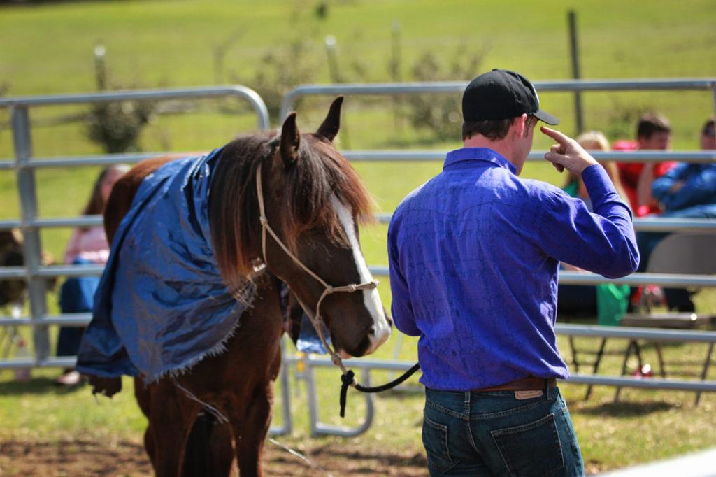 the-horse-guru-michael-gascon-gascon-horsemanship-clinic-1_1_orig