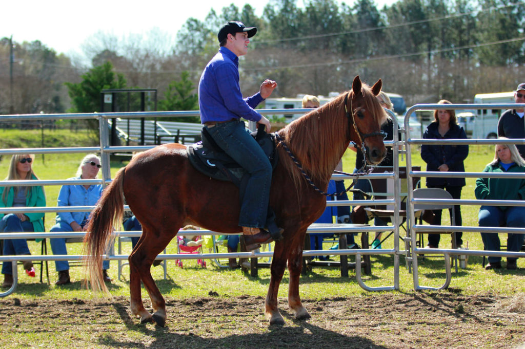 the-horse-guru-michael-gascon-gascon-horsemanship-clinic-2_1_orig
