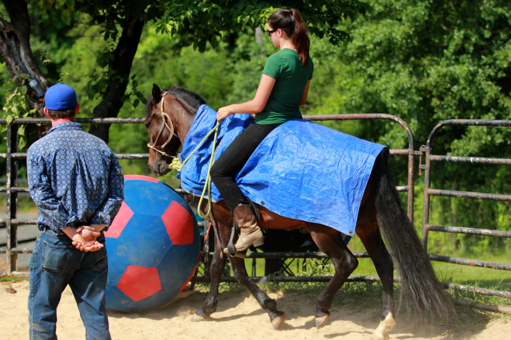 the-horse-guru-michael-gascon-gascon-horsemanship-clinic-4_1_orig