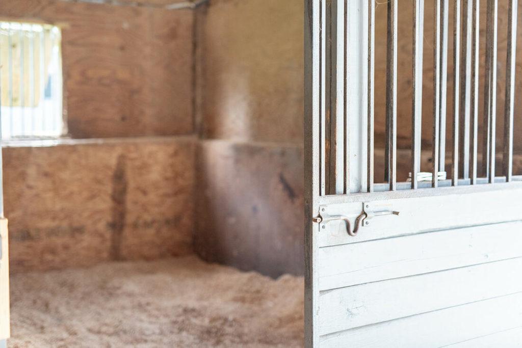 the-horse-guru-michael-gascon-gascon-horsemanship-facility-12_orig