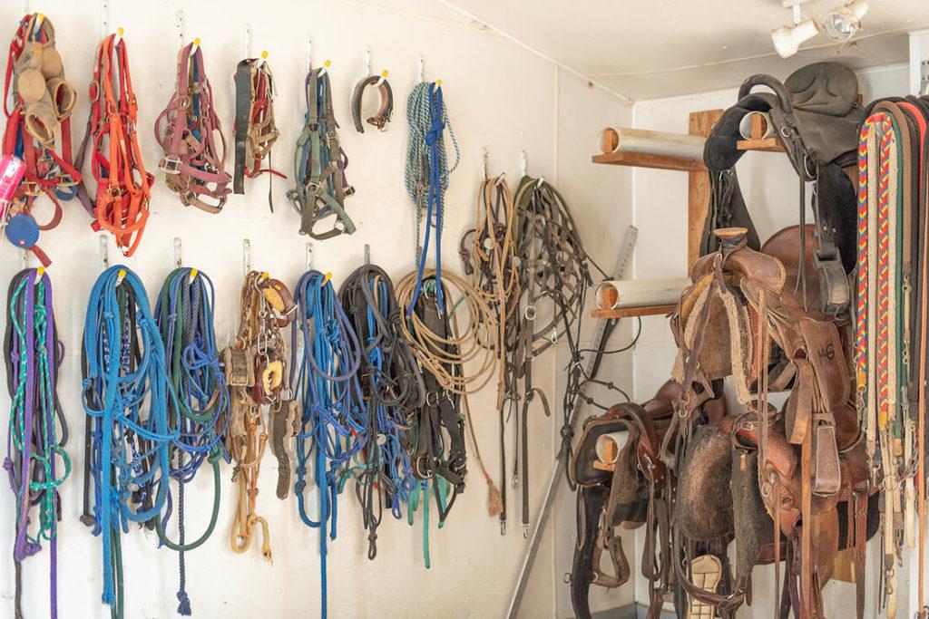 the-horse-guru-michael-gascon-gascon-horsemanship-facility-8_orig