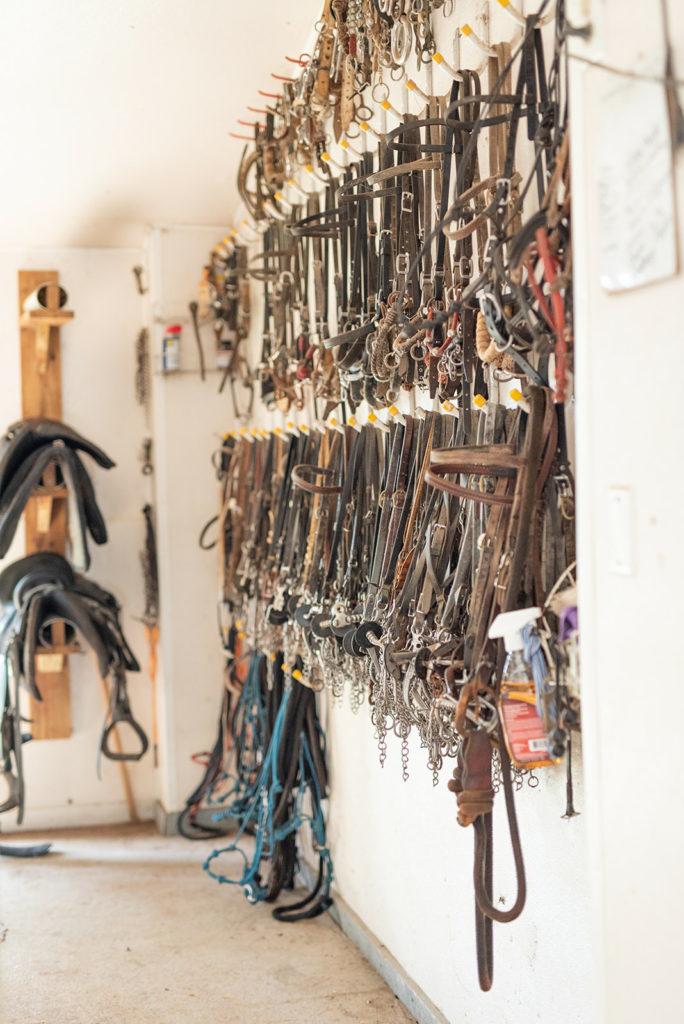 the-horse-guru-michael-gascon-gascon-horsemanship-facility-9_orig