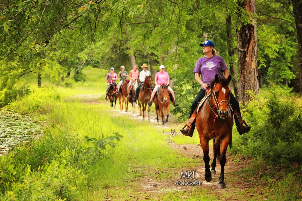 the-horse-guru-michael-gascon-gascon-horsemanship-retreat-2_orig