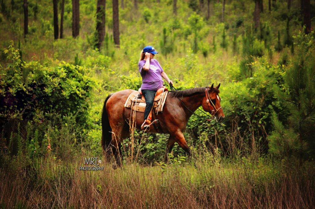 the-horse-guru-michael-gascon-gascon-horsemanship-retreat-3_orig