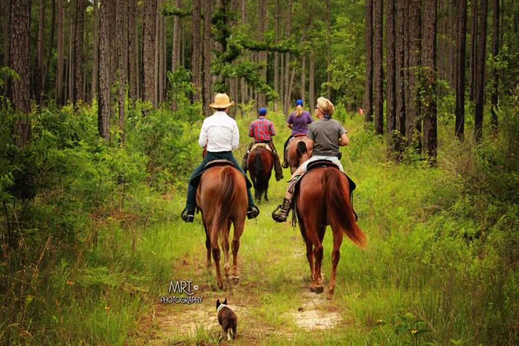 the-horse-guru-michael-gascon-gascon-horsemanship-retreat-6_orig