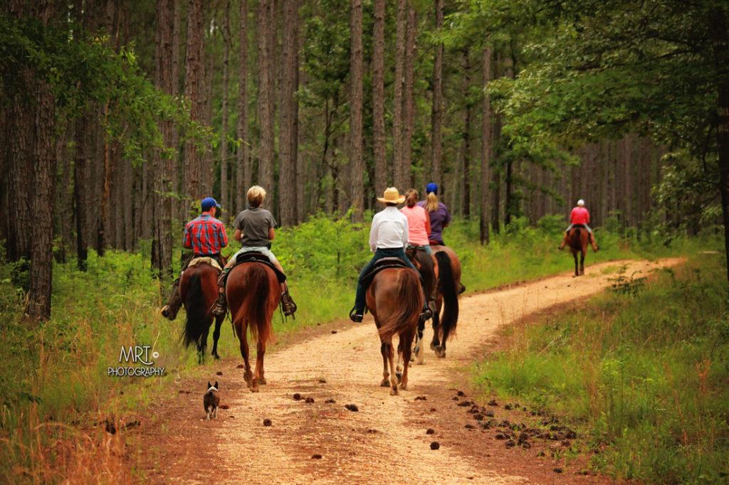 the-horse-guru-michael-gascon-gascon-horsemanship-retreat-7_orig