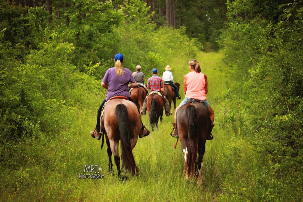 the-horse-guru-michael-gascon-gascon-horsemanship-retreat-8_orig
