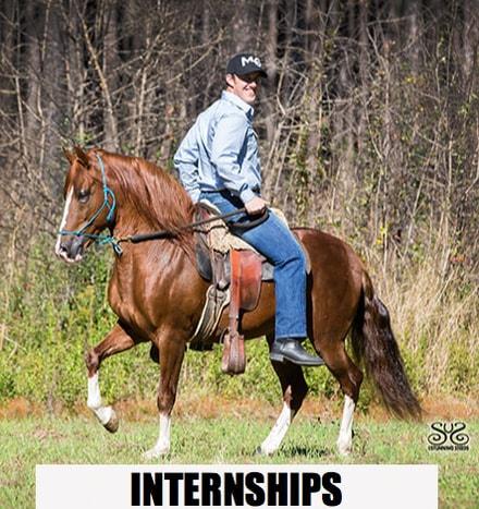 the-horse-guru-michael-gascon-and-gascon-horsemanship-5